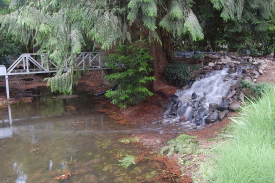 "Molalla Train Park: large waterfall and bridges over the ""lake"""