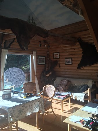 Denali Faith Hill Lodge: Breakfast room again. Mitch said the bear skins were killed with a credit card. (they were fake!