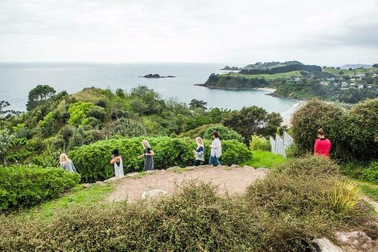 Waiheke Island, New Zealand: Walk & Wine Tour