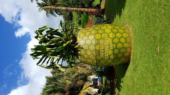 Lawai, HI: Giant pineapple at Hawaiian Trading post