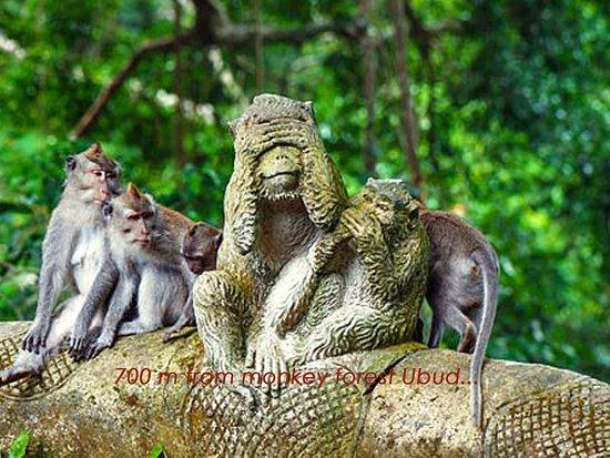 Object Wisata Terdekat 2 Picture Of Titiwangsa Homestay