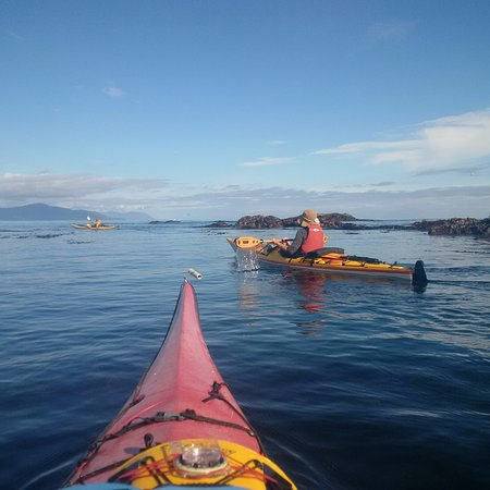 Ocean Sound Kayaking