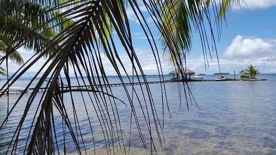 Patio, Polinesia Prancis: 20161019_124021_large.jpg