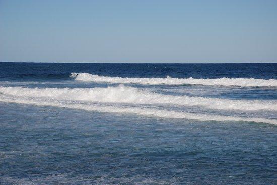 Bateau Bay, Australie : photo8.jpg