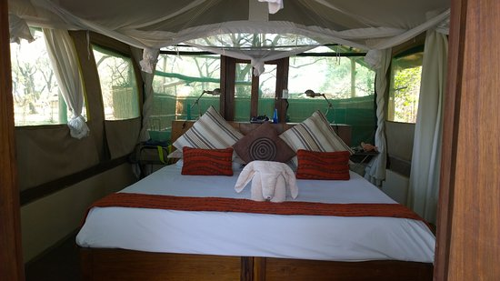 Chongwe River Camp: Room / chalet 3, fab outdoor covered bathroom behind!