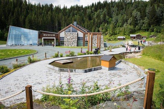Vest-Telemark Museum Eidsborg