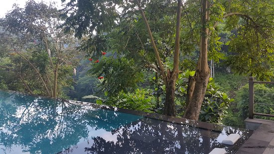 Chapung SeBali Resort and Spa: 20161108_070530_large.jpg