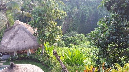 Chapung SeBali Resort and Spa: 20161108_065829_large.jpg