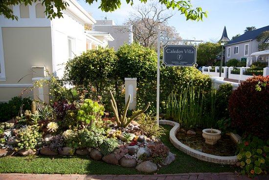 Front Entrance Garden Picture Of Caledon Villa
