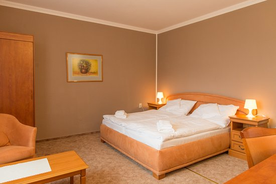 Hotel Grand Zilina : Double Room