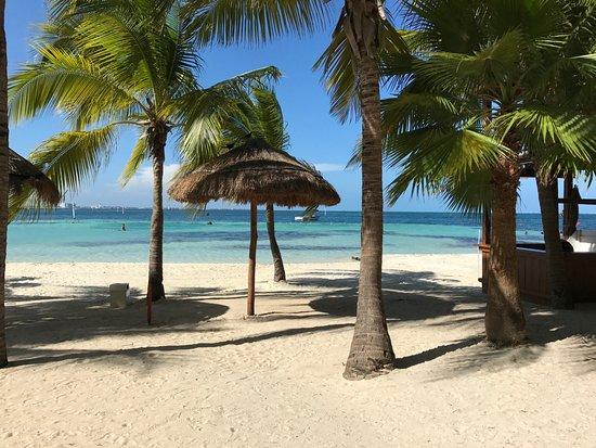Grand Oasis Palm ภาพถ่าย