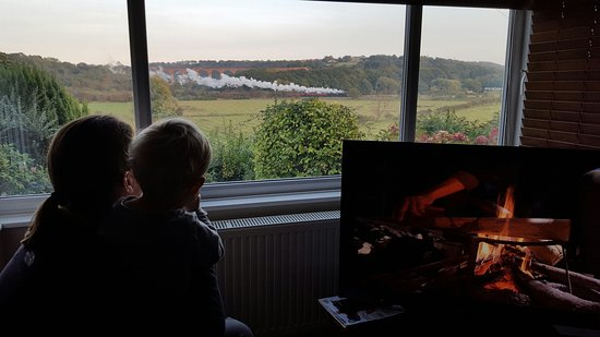 Ruswarp, UK: NYMR Steams By (that's a TV not the fireplace !)
