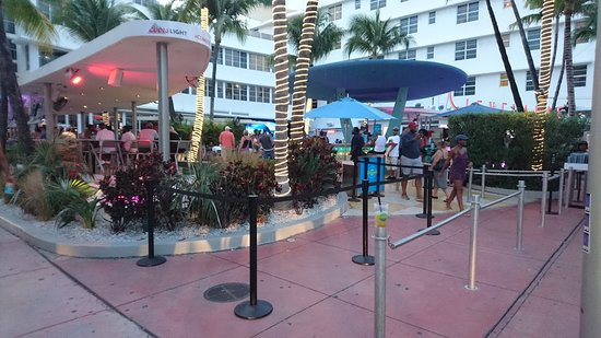 The Clevelander One Of Best Places To Go On Miami Beach Had