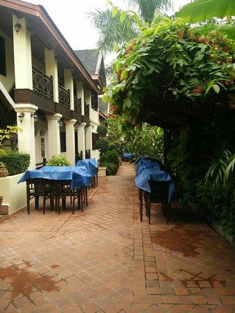 Villa Saykham: IMG_20161108_081802_large.jpg