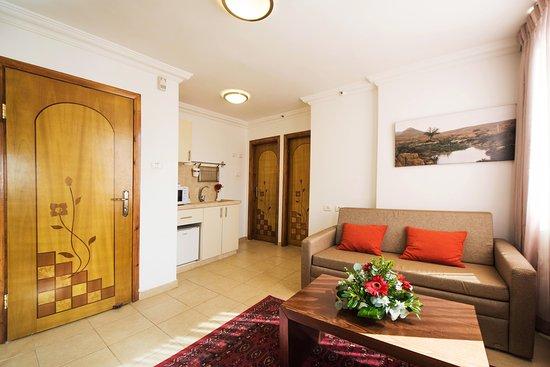 Ramon Suites Hotel: Mini suite living room