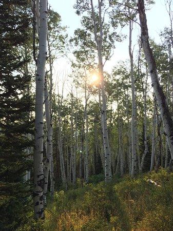 Montage Deer Valley: Hiking behind Montage