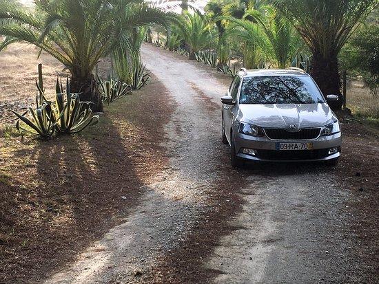 QUINTA DA TORRE: Zu- und Abfahrt zu / vom Hotel
