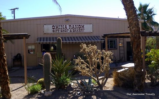 Tecopa, CA: Bakery and store