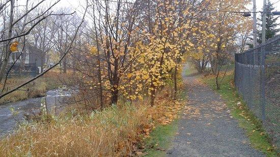 Rennie's River Trail: 20161109_093703_large.jpg
