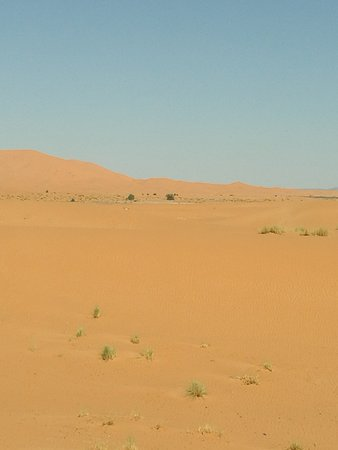 Palais des dunes: IMG_20161031_114924_large.jpg