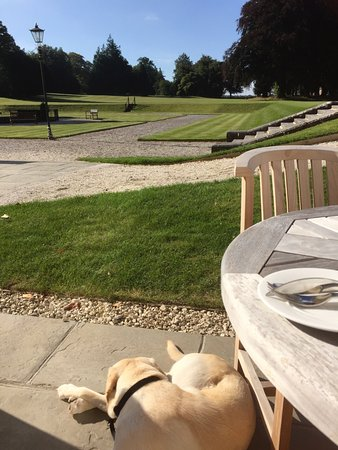 Oakley, UK: Breakfast time