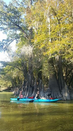 Honey Island Kayak Tours