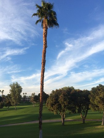 Marriott's Desert Springs Villas II: View from our unit
