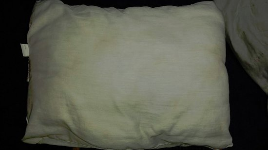 Jot's Resort: This is the other sweaty pillow that had no pillow case that was on the bed for us to sleep on