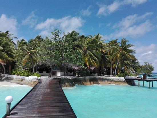 Thulhagiri Island Resort: IMG_20161015_131142_large.jpg