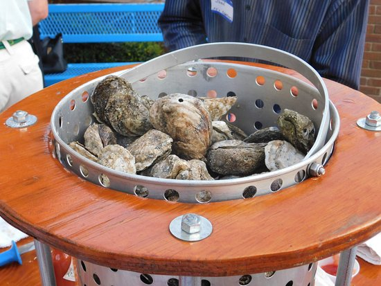 Aiken, SC: Let us cater your next party with an oyster roast! You invite the guests, we do the rest!