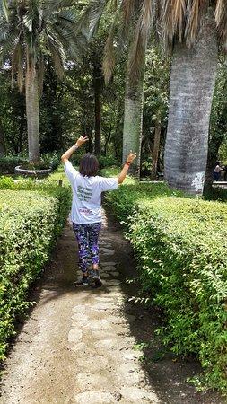 La Quinta de Juan Leon Mera: Recorriendo los senderos