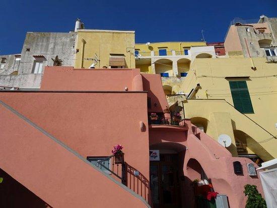 The Port of Corricella: Maisons au dessus du port.