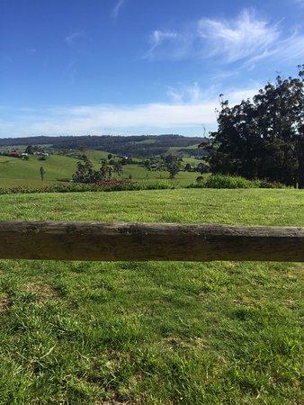 Lilydale, Australia: photo1.jpg