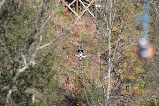 Foxfire Mountain Adventures: Foxfire Zip line