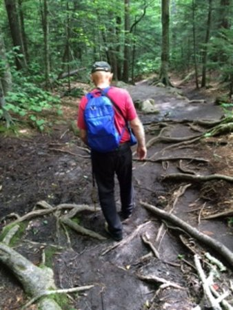 Franconia, Nueva Hampshire: Going back down on very muddy trail due to heavy rain the day before