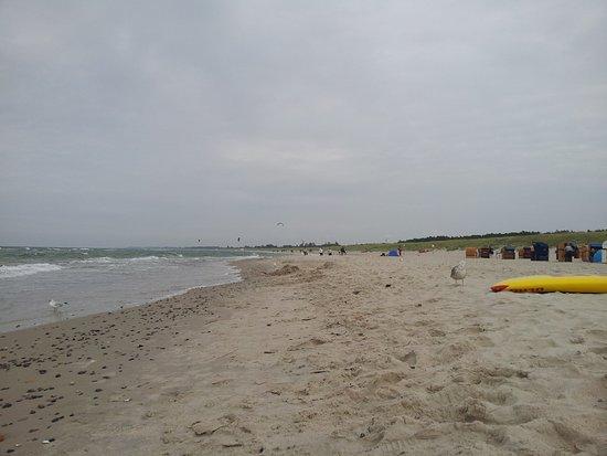Ostseehotel Dierhagen: Strand von Dierhagen