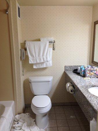 Bathroom, Best Western Coyote Point Inn, San Mateo, CA