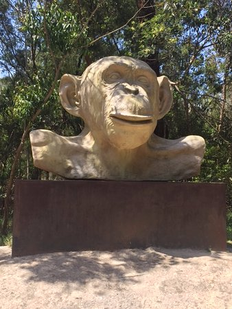McClelland Gallery & Sculpture Park: Giant Monkey head