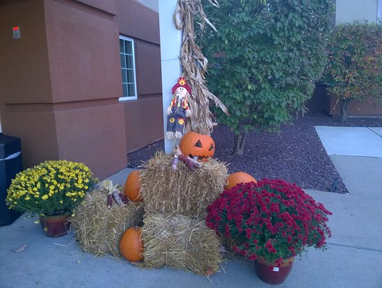 Morris Plains, NJ: The entrance decorated for Halloween.