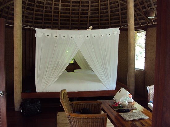 Mosquito nets in all units supplement nightly coils