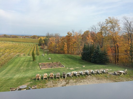 Beamsville, Canadá: View at Mike Weir Winery, Nov. 2016