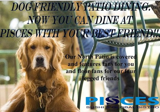 Pisces Sushi And Global Bistro: Dog Patio