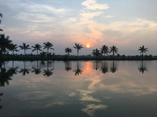 Kondai Lip Backwater Heritage Resort: IMG_5643_large.jpg