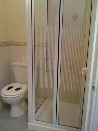 Boyce Hotel: shower room