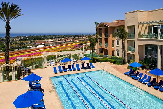 Grand Pacific Palisades Resort and Hotel: Adult Pool and Adjacent Flower Fields