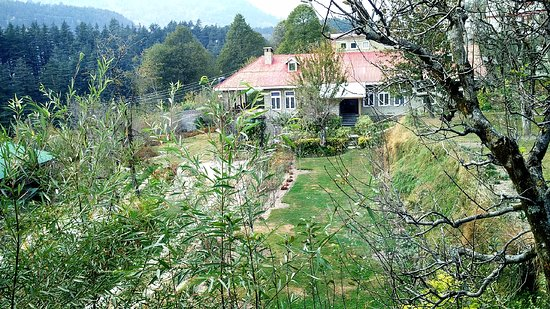view from room picture of treebo woodstock inn manali tripadvisor
