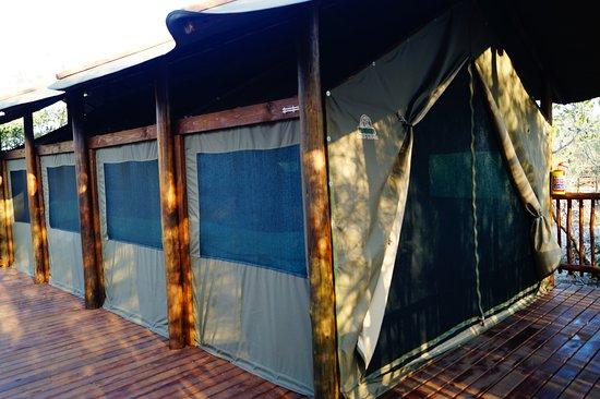 slapen in een luxe tent met eigen terras en badkamer!  Picture of