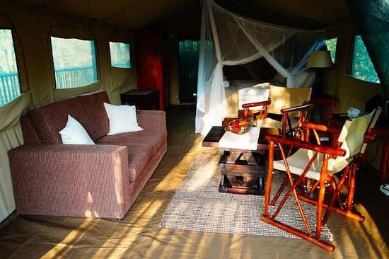 Manyeleti Game Reserve Foto