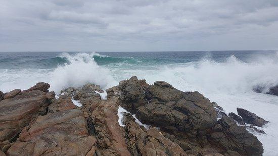 Foto de Cape St Francis