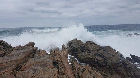Cape St Francis Picture
